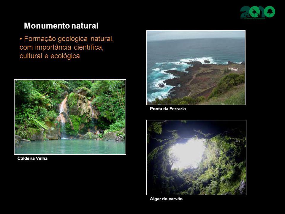 Monumento natural Formação geológica natural, com importância científica, cultural e ecológica Caldeira Velha Ponta da Ferraria Algar do carvão