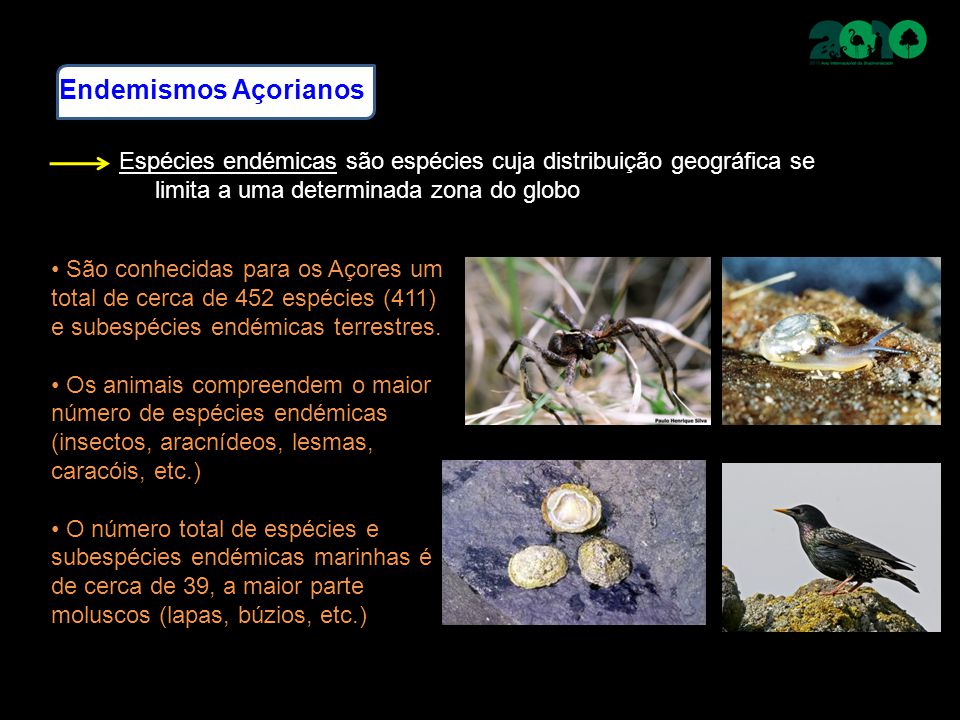 Endemismos Açorianos Espécies endémicas são espécies cuja distribuição geográfica se limita a uma determinada zona do globo São conhecidas para os Açores um total de cerca de 452 espécies (411) e subespécies endémicas terrestres.