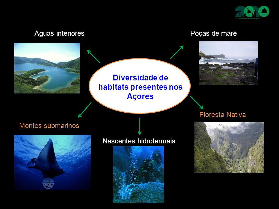 Diversidade de habitats presentes nos Açores Montes submarinos Floresta Nativa Poças de maré Nascentes hidrotermais Águas interiores