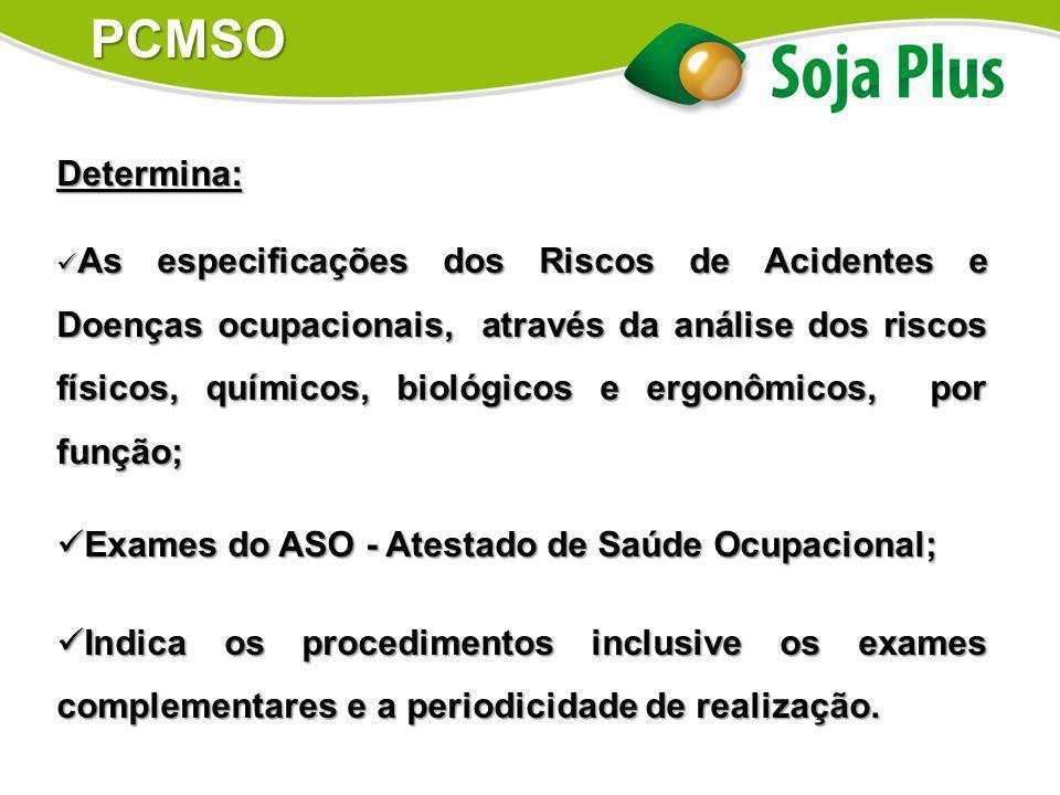 Determina: As especificações dos Riscos de Acidentes e Doenças ocupacionais, através da análise dos riscos físicos, químicos, biológicos e ergonômicos