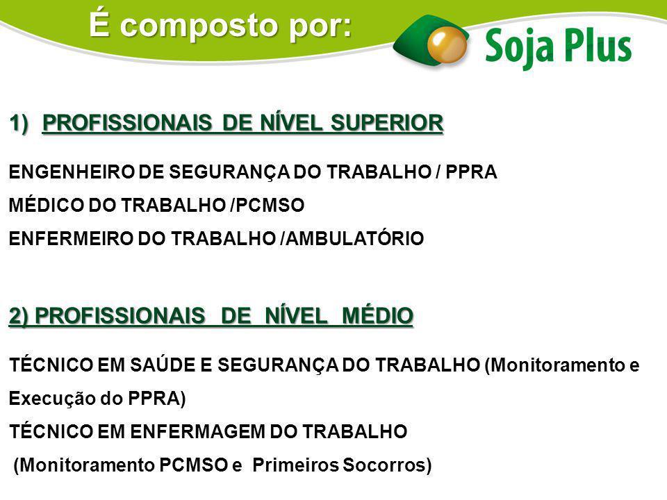 1)PROFISSIONAIS DE NÍVEL SUPERIOR ENGENHEIRO DE SEGURANÇA DO TRABALHO / PPRA MÉDICO DO TRABALHO /PCMSO ENFERMEIRO DO TRABALHO /AMBULATÓRIO 2) PROFISSI