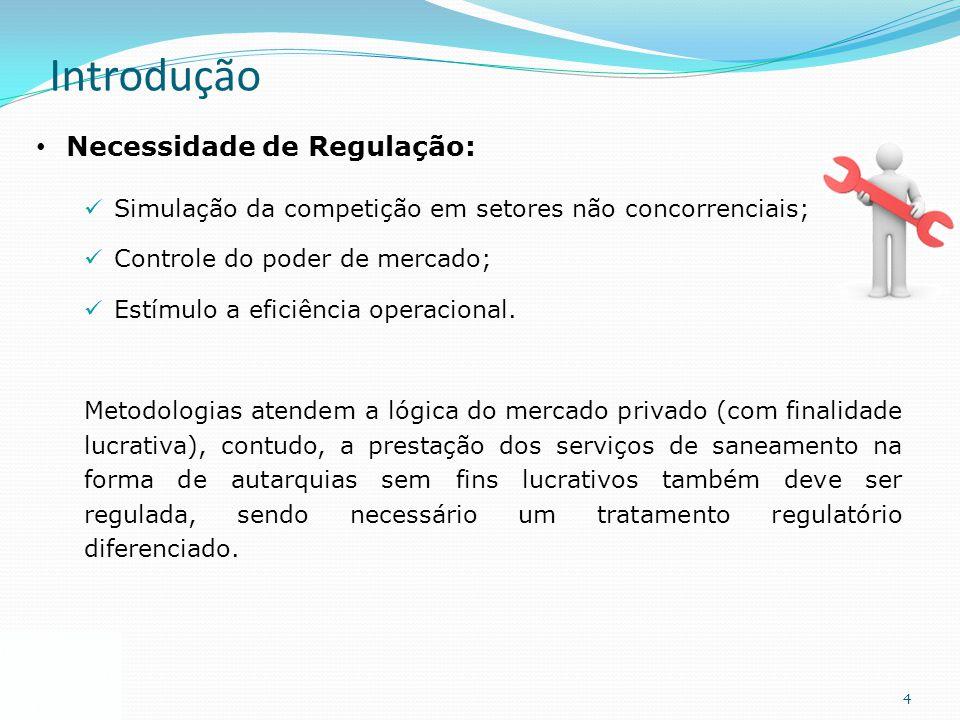 4 Introdução Necessidade de Regulação: Simulação da competição em setores não concorrenciais; Controle do poder de mercado; Estímulo a eficiência oper