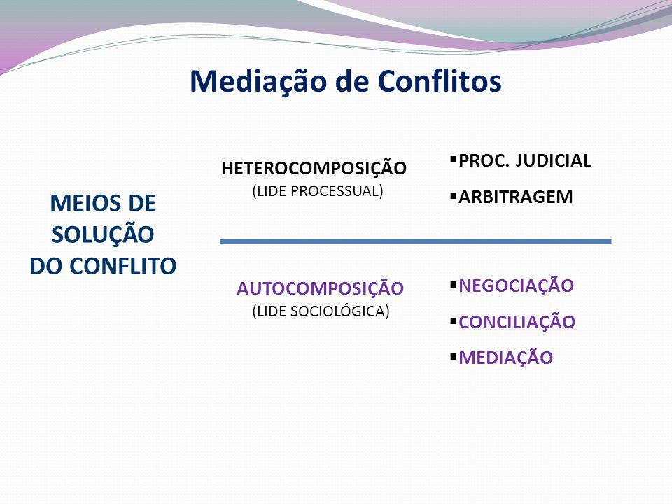 HETEROCOMPOSIÇÃO (LIDE PROCESSUAL) MEIOS DE SOLUÇÃO DO CONFLITO  PROC.