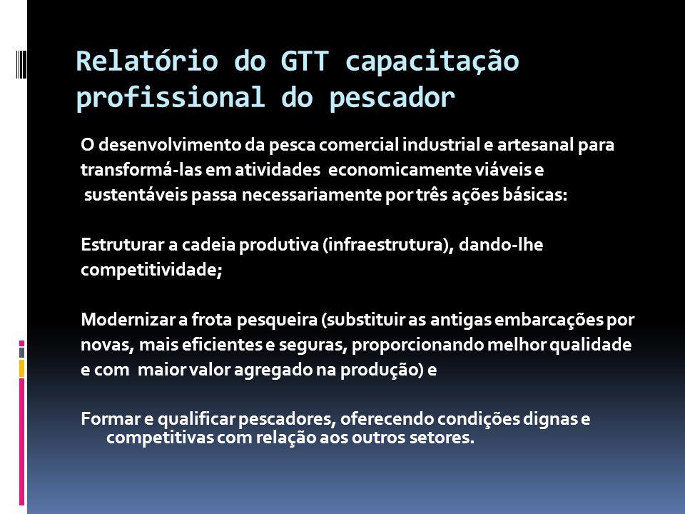 Relatório do GTT capacitação profissional do pescador O desenvolvimento da pesca comercial industrial e artesanal para transformá-las em atividades ec