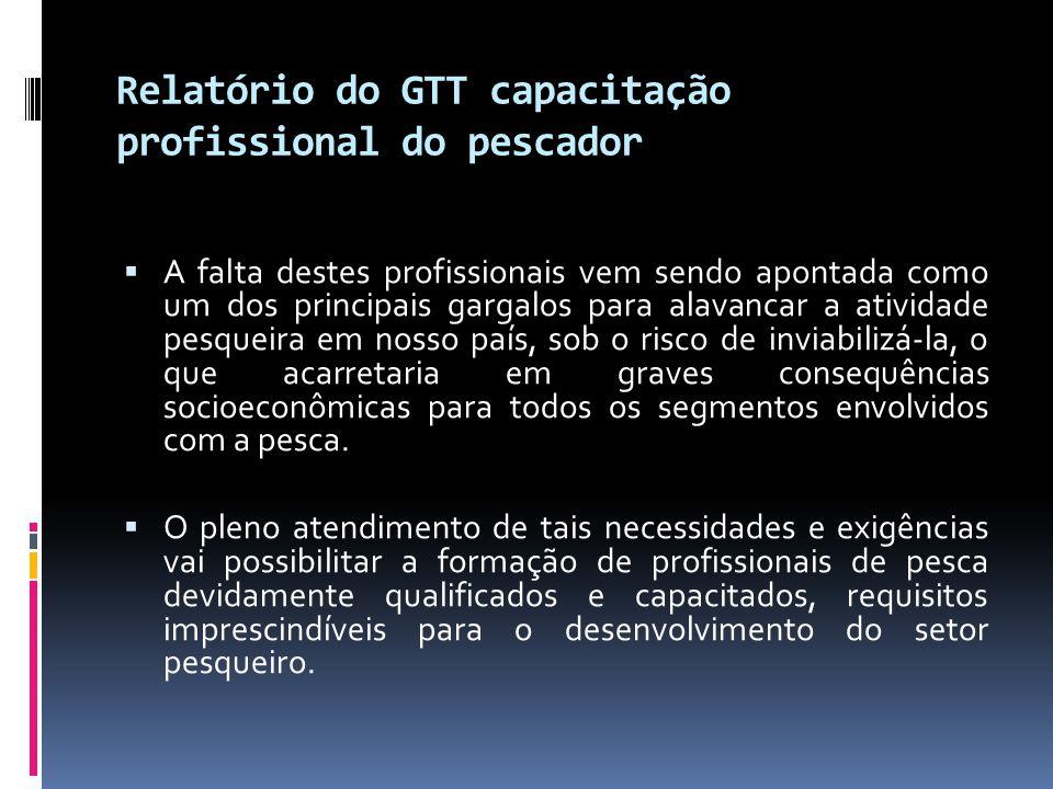 Relatório do GTT capacitação profissional do pescador  A falta destes profissionais vem sendo apontada como um dos principais gargalos para alavancar