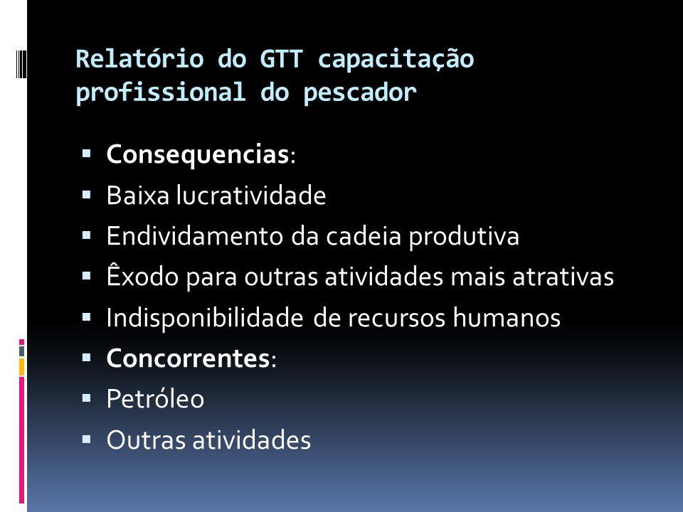 Relatório do GTT capacitação profissional do pescador  Consequencias:  Baixa lucratividade  Endividamento da cadeia produtiva  Êxodo para outras a
