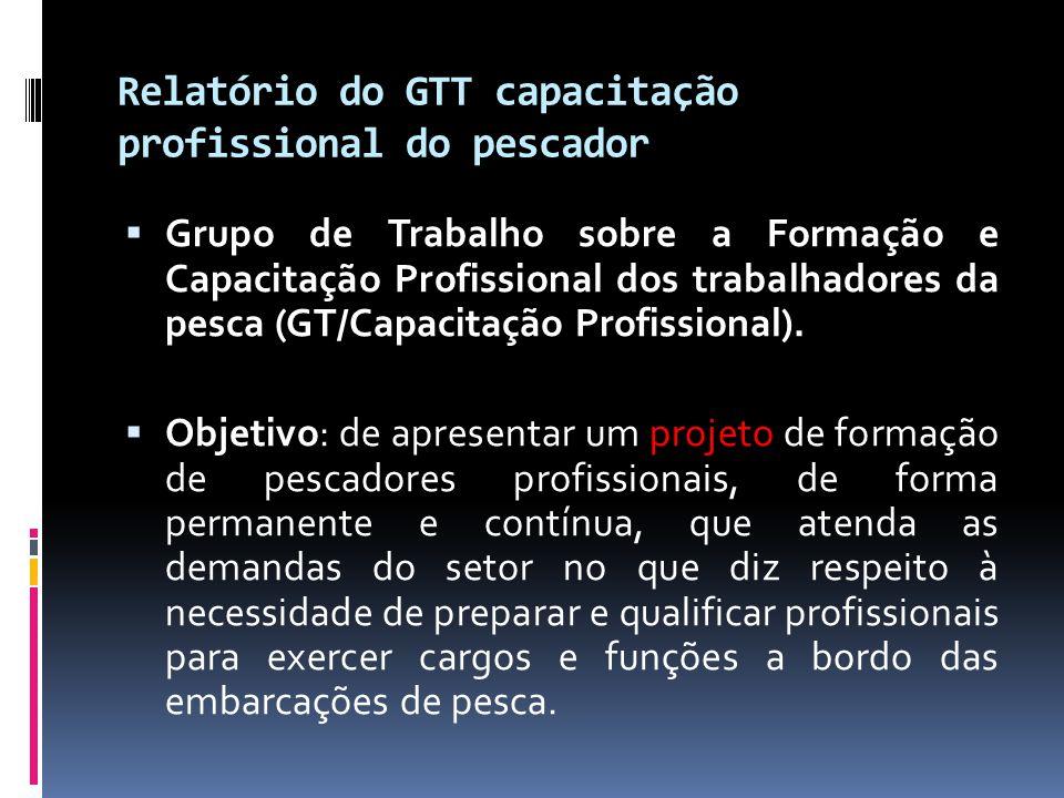 Relatório do GTT capacitação profissional do pescador  Grupo de Trabalho sobre a Formação e Capacitação Profissional dos trabalhadores da pesca (GT/C