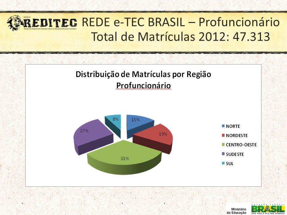 REDE e-TEC BRASIL – Profuncionário Total de Matrículas 2012: 47.313
