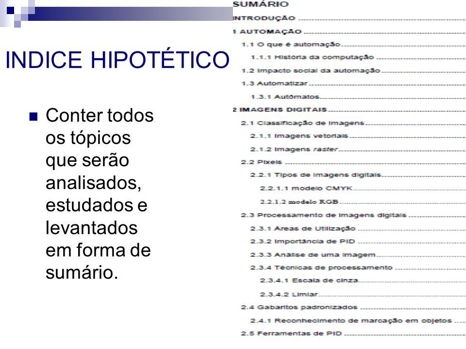 INDICE HIPOTÉTICO Conter todos os tópicos que serão analisados, estudados e levantados em forma de sumário.