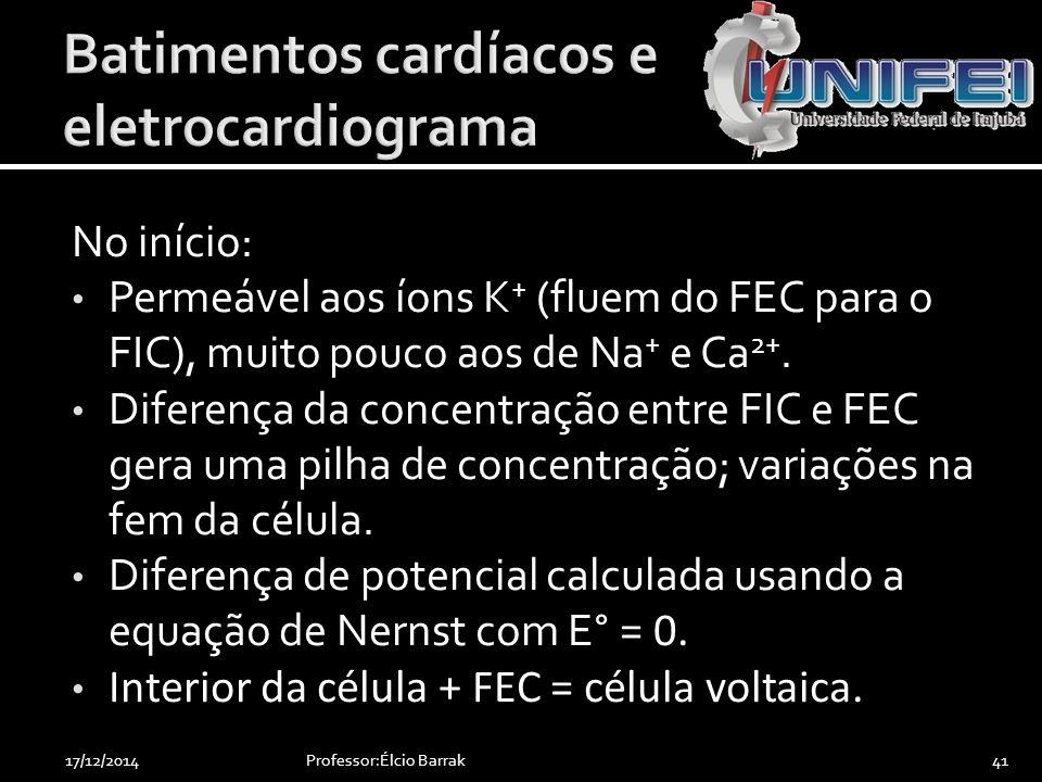 No início: Permeável aos íons K + (fluem do FEC para o FIC), muito pouco aos de Na + e Ca 2+. Diferença da concentração entre FIC e FEC gera uma pilha