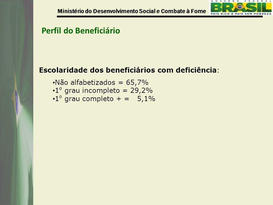 Ministério do Desenvolvimento Social e Combate à Fome Perfil do Beneficiário Escolaridade dos beneficiários com deficiência: Não alfabetizados = 65,7% 1 ⁰ grau incompleto = 29,2% 1 ⁰ grau completo + = 5,1%
