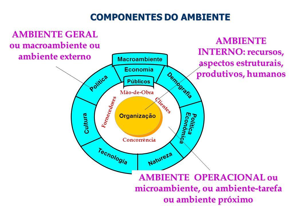 20 Organização Política Economia Demografia Tecnologia Natureza Cultura Política Econômica Públicos Macroambiente COMPONENTES DO AMBIENTE COMPONENTES