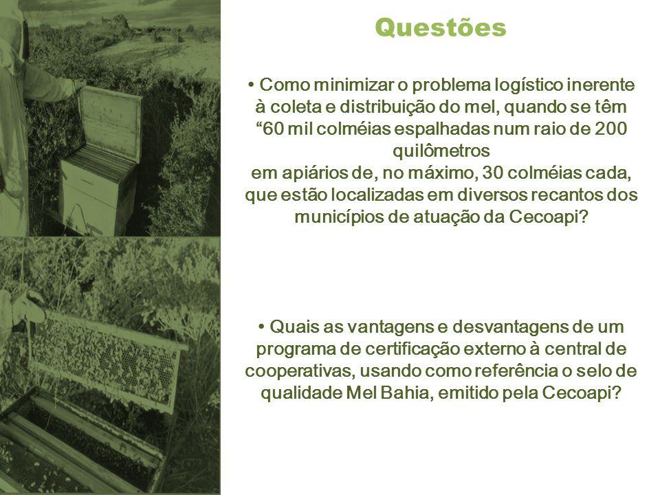 """Questões Como minimizar o problema logístico inerente à coleta e distribuição do mel, quando se têm """"60 mil colméias espalhadas num raio de 200 quilôm"""