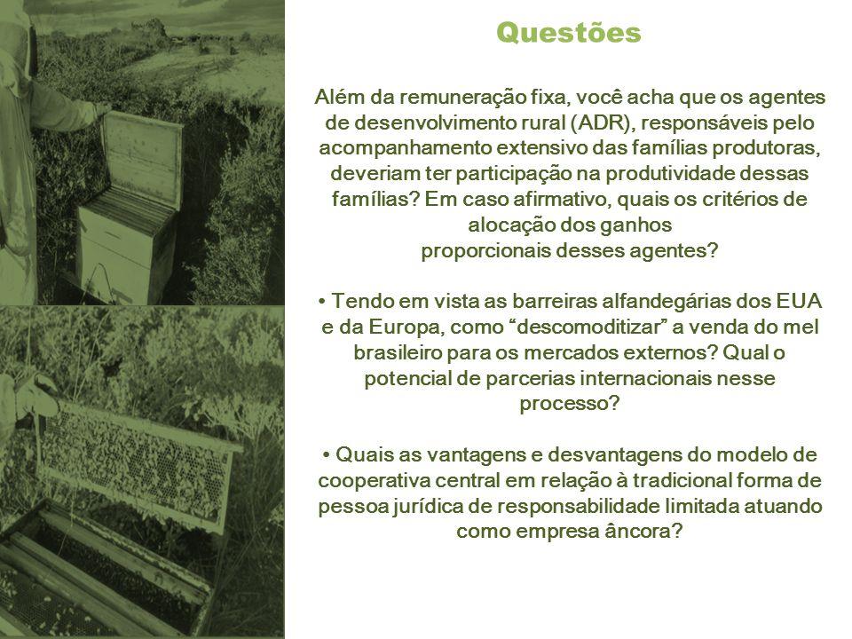 Questões Além da remuneração fixa, você acha que os agentes de desenvolvimento rural (ADR), responsáveis pelo acompanhamento extensivo das famílias pr