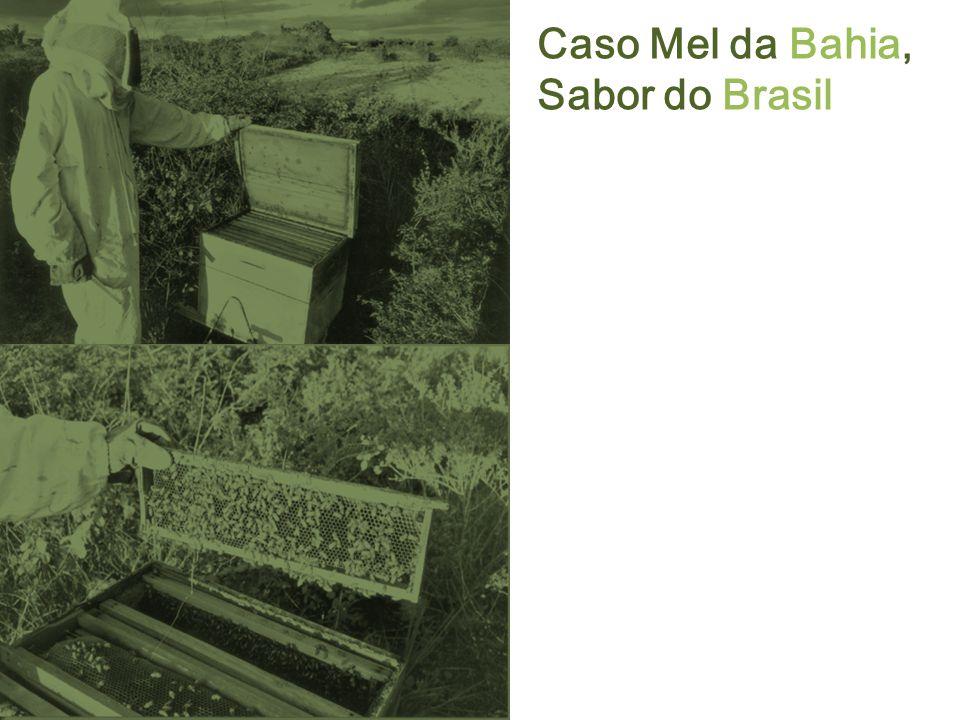 Abelha não faz mal, faz mel professor Augusto de Souza Braga