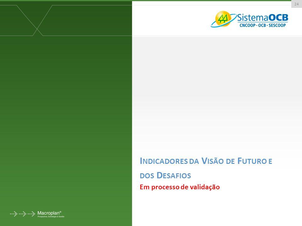I NDICADORES DA V ISÃO DE F UTURO E DOS D ESAFIOS Em processo de validação 24