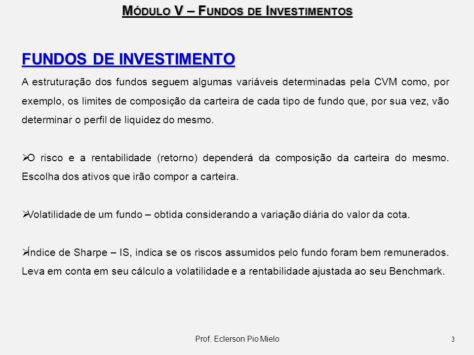 M ÓDULO V – F UNDOS DE I NVESTIMENTOS FUNDOS DE INVESTIMENTO A estruturação dos fundos seguem algumas variáveis determinadas pela CVM como, por exempl