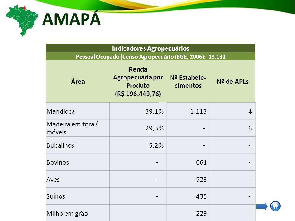 AMAPÁ Indicadores Agropecuários Pessoal Ocupado (Censo Agropecuário IBGE, 2006): 13.131 Área Renda Agropecuária por Produto (R$ 196.449,76) Nº Estabele- cimentos Nº de APLs Mandioca39,1% 1.113 4 Madeira em tora / móveis 29,3% - 6 Bubalinos5,2% - - Bovinos- 661 - Aves- 523 - Suínos- 435 - Milho em grão- 229 - Arroz em casca- 136 - Açai- - 4 Pesca e Aquicultura- - 4