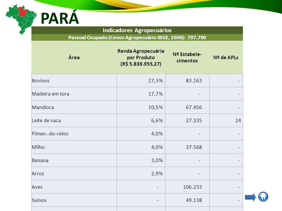 PARÁ Indicadores Agropecuários Pessoal Ocupado (Censo Agropecuário IBGE, 2006): 797.790 Área Renda Agropecuária por Produto (R$ 5.839.955,27) Nº Estabele- cimentos Nº de APLs Bovinos27,3% 83.163 - Madeira em tora17,7% - - Mandioca10,5% 67.456 - Leite de vaca6,6% 27.335 24 Pimen.-do-reino4,0% - - Milho4,0% 37.568 - Banana3,0% - - Arroz2,9% - - Aves- 106.233 - Suínos- 49.138 - Arroz em casca- 24.881 - Feijão-fradinho, caupi, de corda ou macáçar em grão - 11.593 - Feijão de cor- 6.844 - Café arábica em grão (verde)- 3.137 - Apicultura- - 22 Fruticultura- - 10 Flores e Plantas Ormentais- - 9 Madeira e Móveis- - 6 Pesca e Aquicultura- - 5