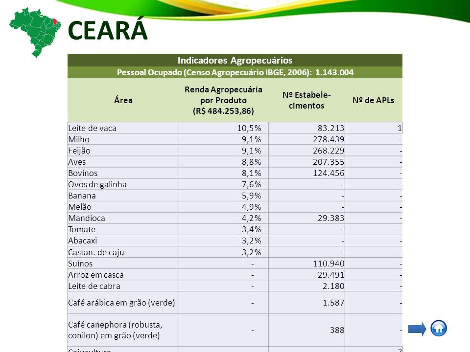 CEARÁ Indicadores Agropecuários Pessoal Ocupado (Censo Agropecuário IBGE, 2006): 1.143.004 Área Renda Agropecuária por Produto (R$ 484.253,86) Nº Estabele- cimentos Nº de APLs Leite de vaca10,5%83.2131 Milho9,1%278.439- Feijão9,1%268.229- Aves8,8%207.355- Bovinos8,1%124.456- Ovos de galinha7,6%-- Banana5,9%-- Melão4,9%-- Mandioca4,2%29.383- Tomate3,4%-- Abacaxi3,2%-- Castan.