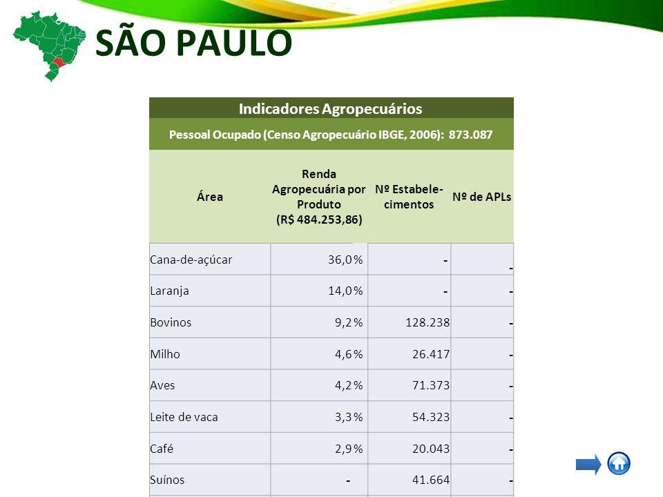 SÃO PAULO Indicadores Agropecuários Pessoal Ocupado (Censo Agropecuário IBGE, 2006): 873.087 Área Renda Agropecuária por Produto (R$ 484.253,86) Nº Estabele- cimentos Nº de APLs Cana-de-açúcar36,0% - - Laranja14,0% - - Bovinos9,2%128.238 - Milho4,6%26.417 - Aves4,2%71.373 - Leite de vaca3,3%54.323 - Café2,9%20.043 - Suínos - 41.664 - Mandioca - 9.240 - Feijão - 6.487 - Soja - 3.904 - Arroz em casca - 1.237 - Álcool - - 23