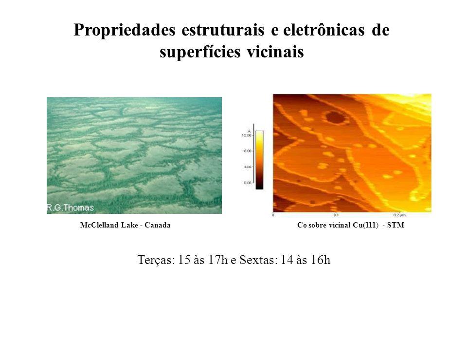 Propriedades estruturais e eletrônicas de superfícies vicinais Terças: 15 às 17h e Sextas: 14 às 16h McClelland Lake - Canada Co sobre vicinal Cu(111) - STM