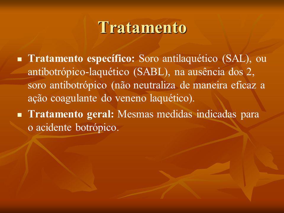Tratamento Tratamento específico: Soro antilaquético (SAL), ou antibotrópico-laquético (SABL), na ausência dos 2, soro antibotrópico (não neutraliza de maneira eficaz a ação coagulante do veneno laquético).