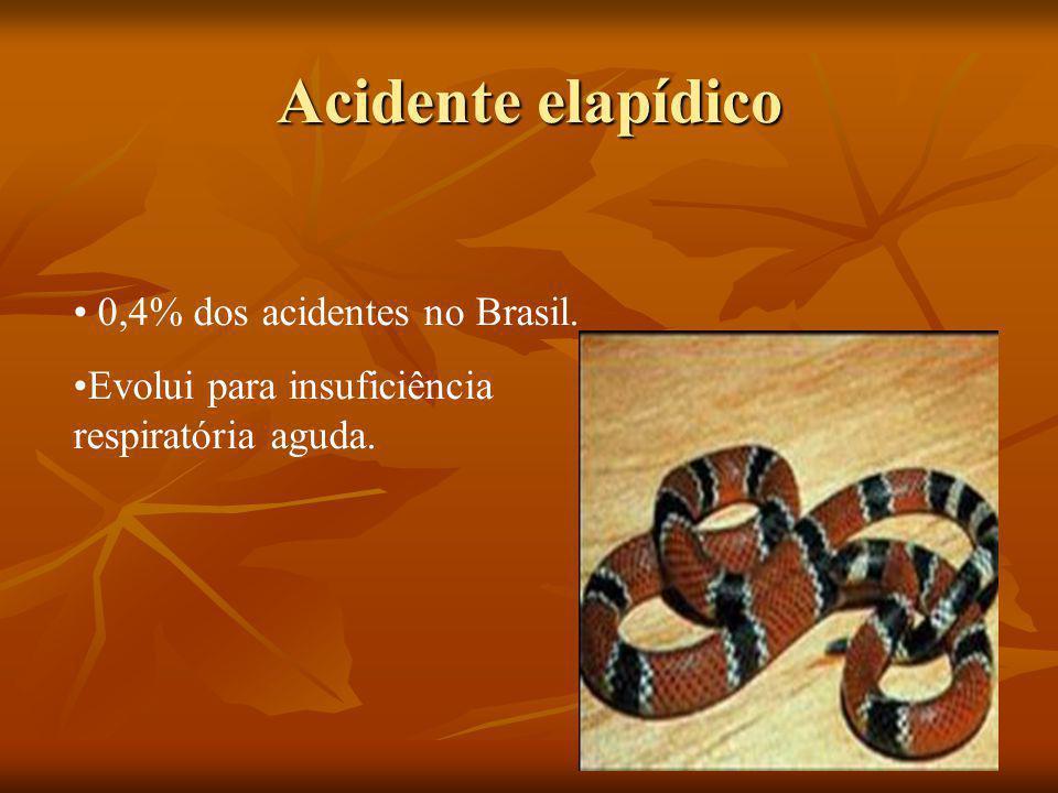 Acidente elapídico 0,4% dos acidentes no Brasil. Evolui para insuficiência respiratória aguda.