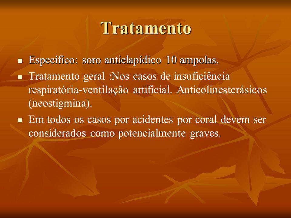 Tratamento Específico: soro antielapídico 10 ampolas.