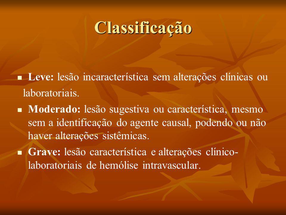 Classificação Leve: lesão incaracterística sem alterações clínicas ou laboratoriais.