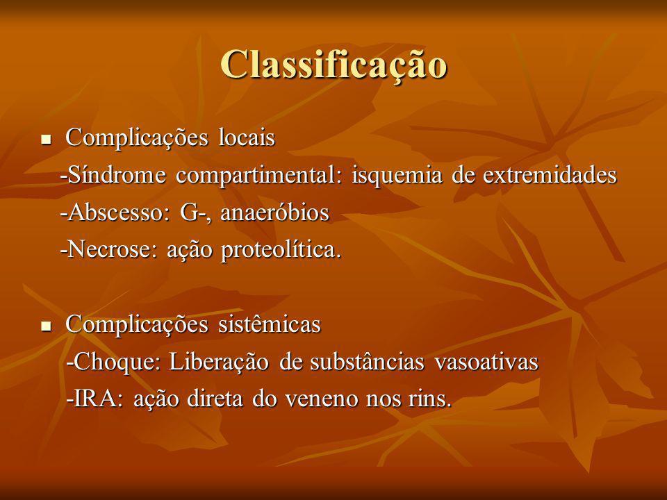 Classificação Complicações locais Complicações locais -Síndrome compartimental: isquemia de extremidades -Síndrome compartimental: isquemia de extremidades -Abscesso: G-, anaeróbios -Abscesso: G-, anaeróbios -Necrose: ação proteolítica.