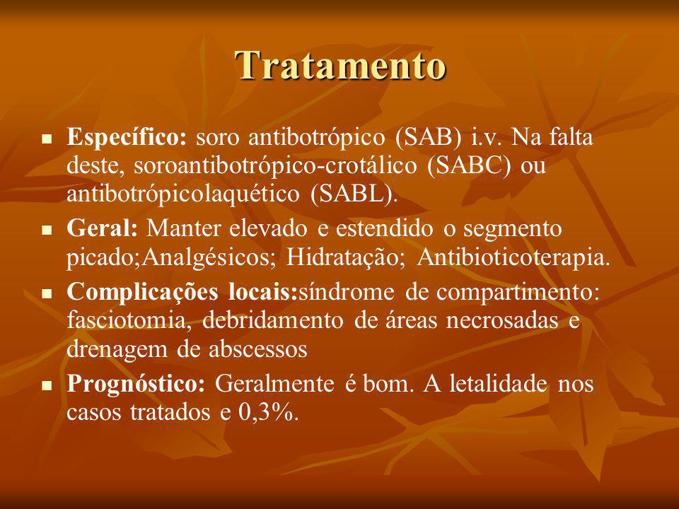 Tratamento Específico: soro antibotrópico (SAB) i.v.