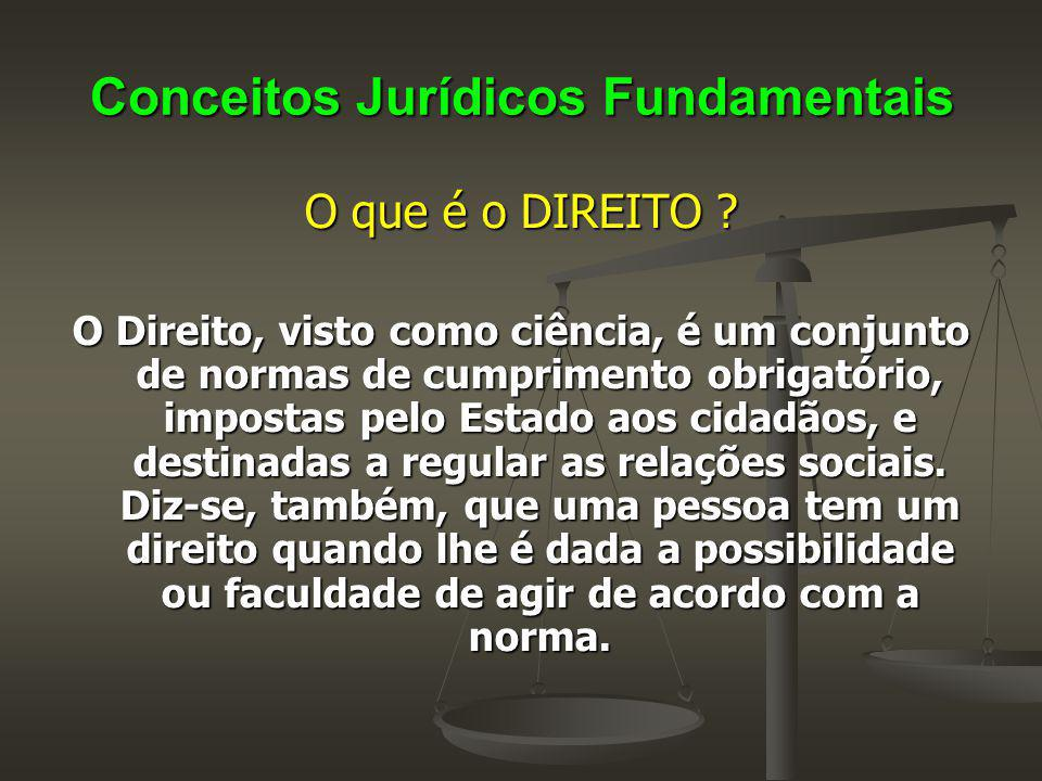 Conceitos Jurídicos Fundamentais O que é o DIREITO ? O Direito, visto como ciência, é um conjunto de normas de cumprimento obrigatório, impostas pelo