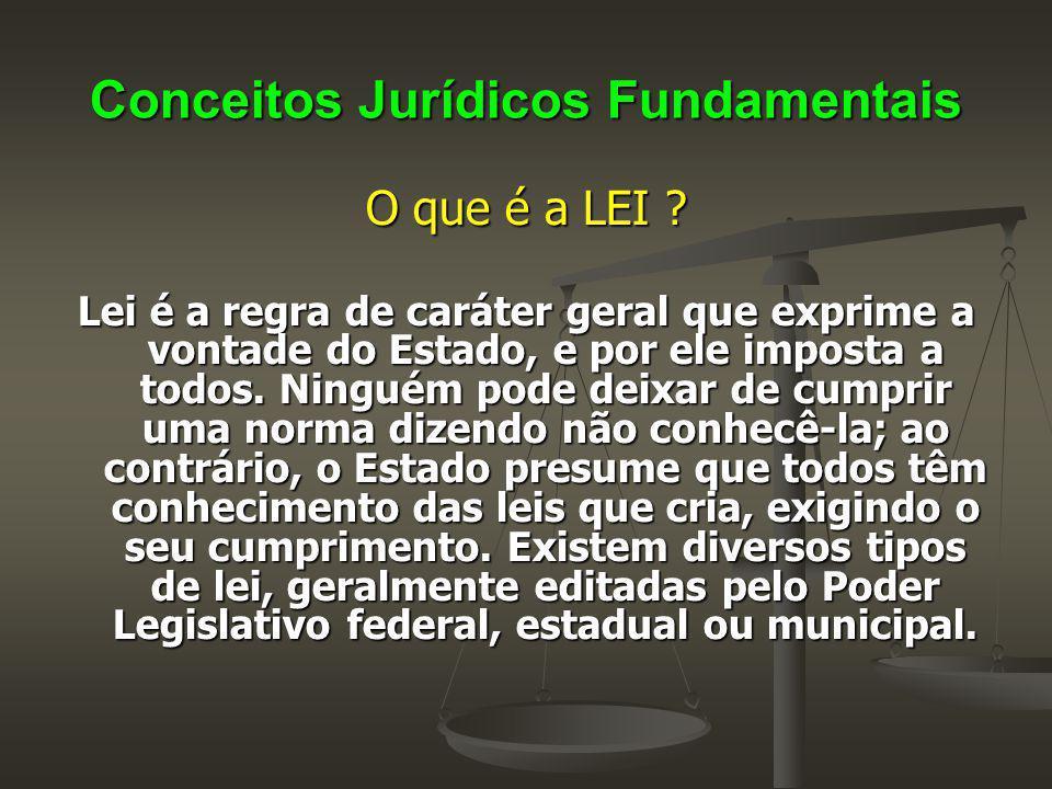 Conceitos Jurídicos Fundamentais O que é a LEI ? Lei é a regra de caráter geral que exprime a vontade do Estado, e por ele imposta a todos. Ninguém po