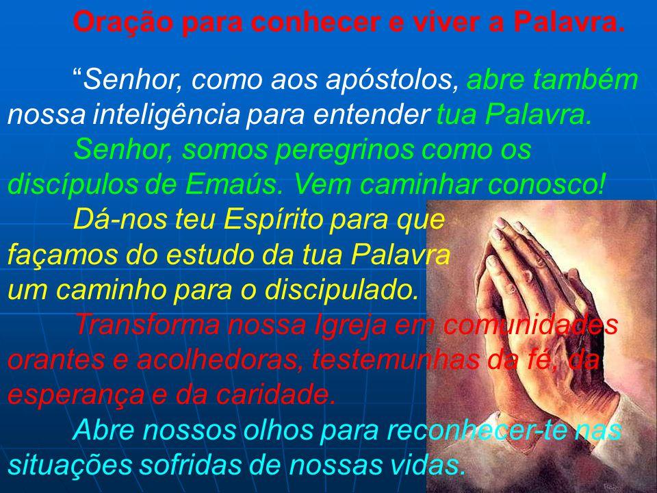 """Oração para conhecer e viver a Palavra. """"Senhor, como aos apóstolos, abre também nossa inteligência para entender tua Palavra. Senhor, somos peregrino"""