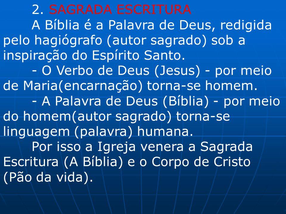 2. SAGRADA ESCRITURA A Bíblia é a Palavra de Deus, redigida pelo hagiógrafo (autor sagrado) sob a inspiração do Espírito Santo. - O Verbo de Deus (Jes