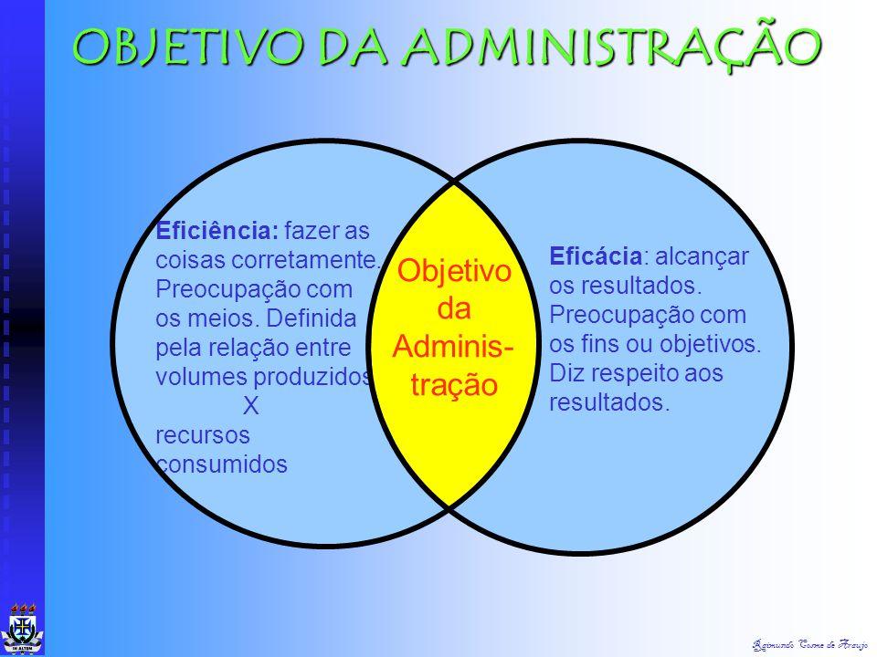 Raimundo Cosme de Araujo DIREÇÃO É a função administrativa de operar a organização (ou qualquer subdivisão) a medida que esta executa os planos traçad