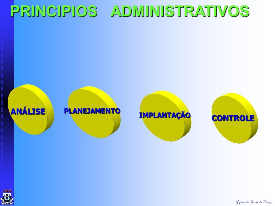 Raimundo Cosme de Araujo VARIÁVEIS BÁSICAS DA TGA Organização (Empresa) Fonte: Chiavenato Tarefas Pessoas Tecnologia Ambiente Estrutura