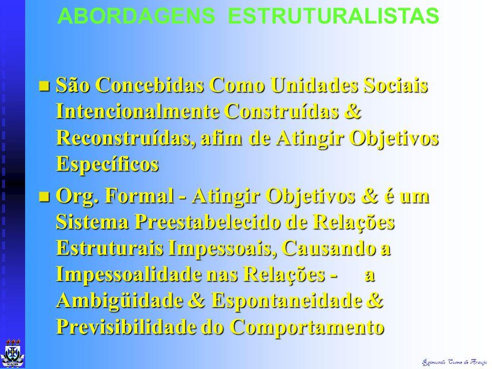 Raimundo Cosme de Araujo ABORDAGENS ESTRUTURALISTAS Organizações é uma Forma Dominante de Instituição na Sociedade. Organizações é uma Forma Dominante