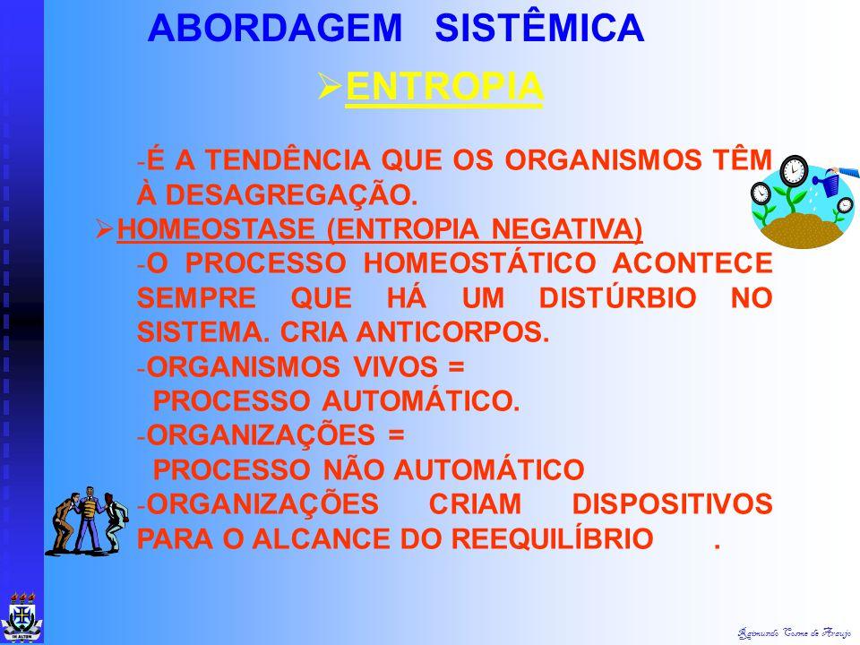 """Raimundo Cosme de Araujo ABORDAGEM SISTÊMICA  EXSUMOS (SAÍDAS, PRODUTOS, """"OUTPUTS"""") RESULTADOS DO SISTEMA, OBJETIVOS QUE O SISTEMA PRETENDE ATINGIR."""