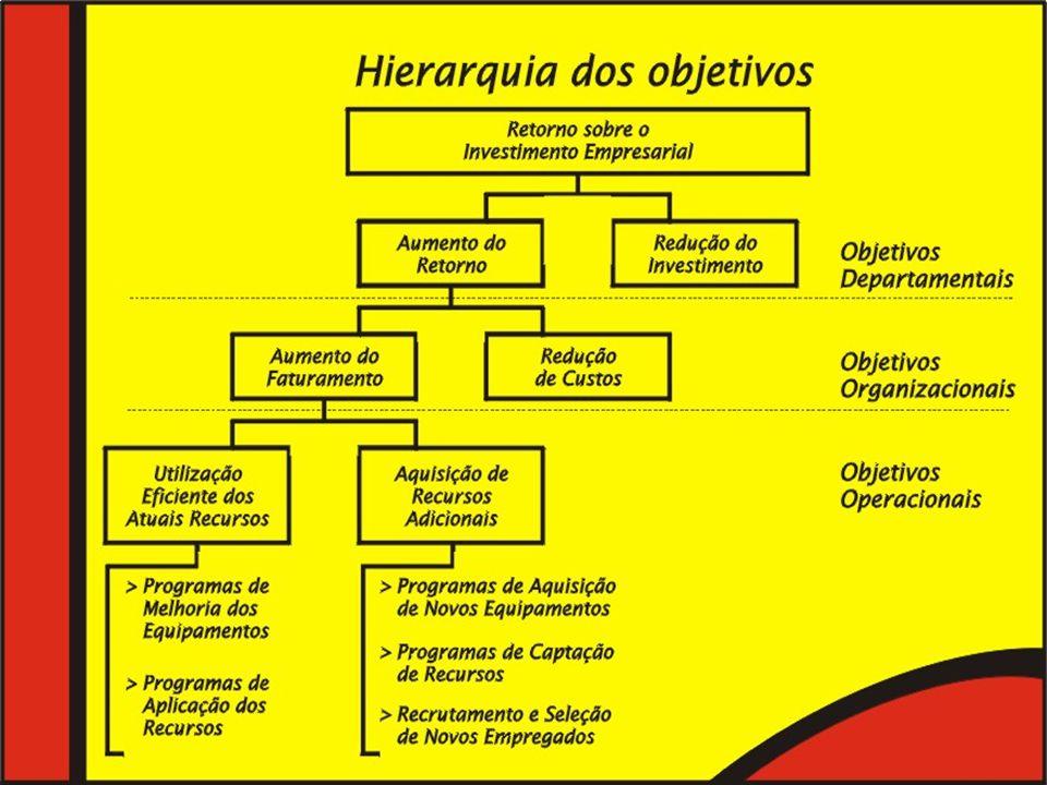 Raimundo Cosme de Araujo OBJETIVOS MAIS COMUNS 1.POSIÇÃO MAIS COMPETITIVA NO MERCADO 2.INOVAÇÃO E CRIATIVIDADE NOS PRODUTOS 3.PRODUTIVIDADE EFICIÊNCIA