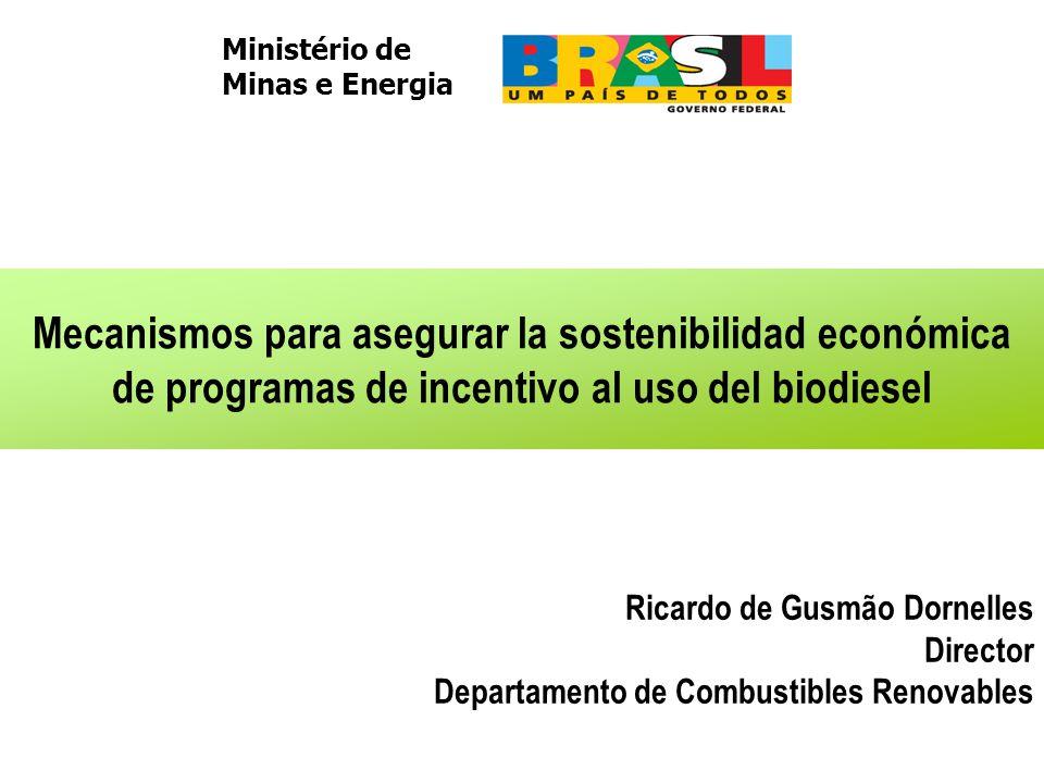 Mecanismos para asegurar la sostenibilidad económica de programas de incentivo al uso del biodiesel Ministério de Minas e Energia Ricardo de Gusmão Dornelles Director Departamento de Combustibles Renovables