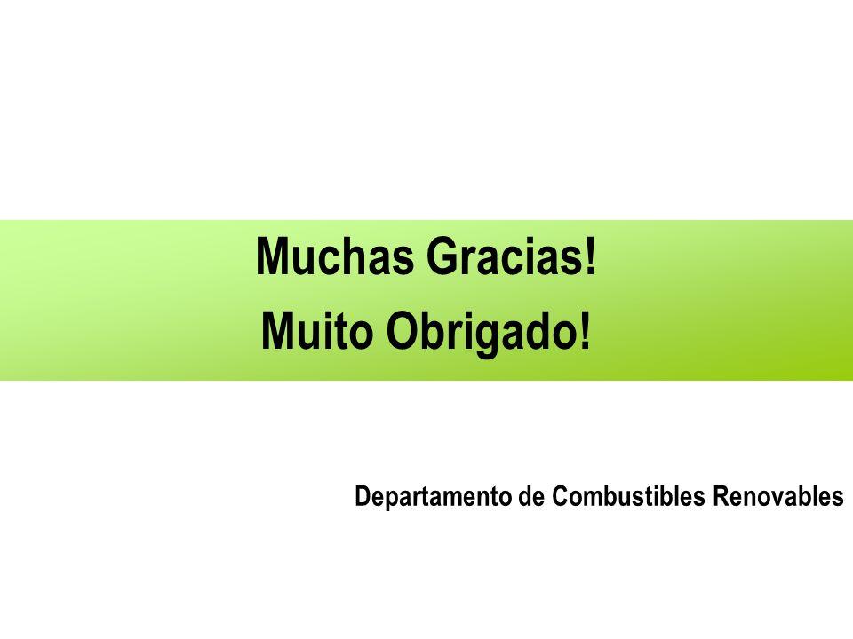 Muchas Gracias! Muito Obrigado! Departamento de Combustibles Renovables
