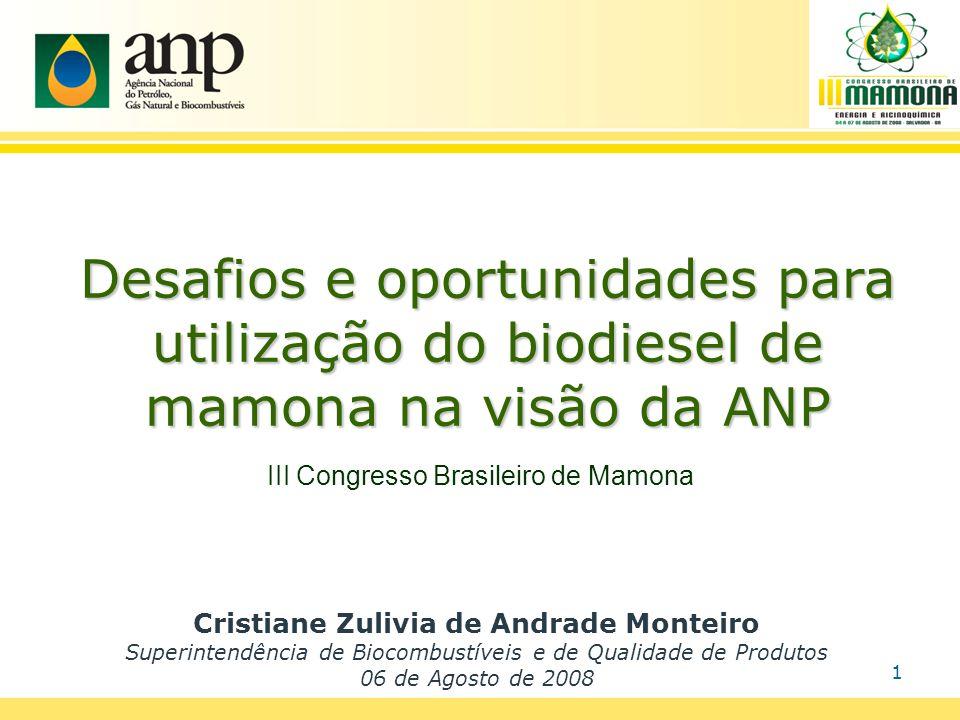 Biodiesel de Mamona Teor médio de óleo: 49% 146.000 ton ~ 79.000 m3 Mercado Potencial de B100 em 2008: 1.113.000 m3 www.ambientebrasil.com.br (100% rendimento) 7%