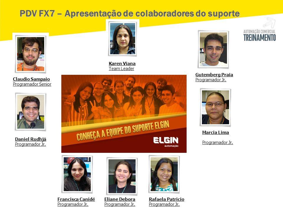 PDV FX7 – Apresentação de colaboradores do suporte Claudio Sampaio Programador Senior Daniel Rudhjá Programador Jr. Eliane Debora Programador Jr. Fran