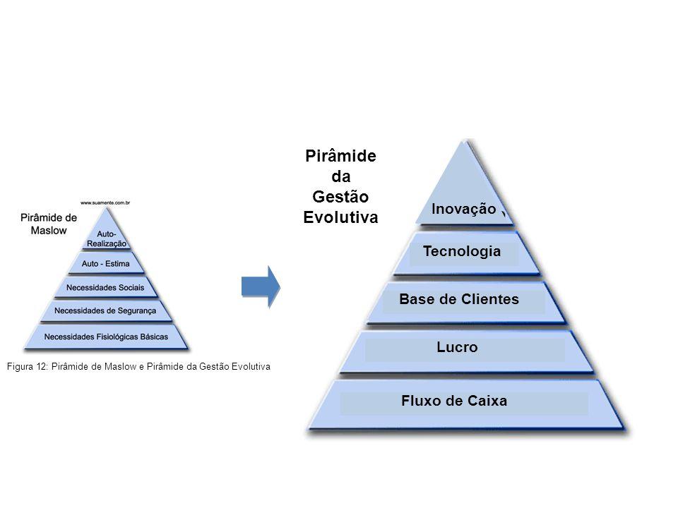 Fluxo de Caixa Lucro Base de Clientes Tecnologia Inovação Pirâmide da Gestão Evolutiva Figura 12: Pirâmide de Maslow e Pirâmide da Gestão Evolutiva