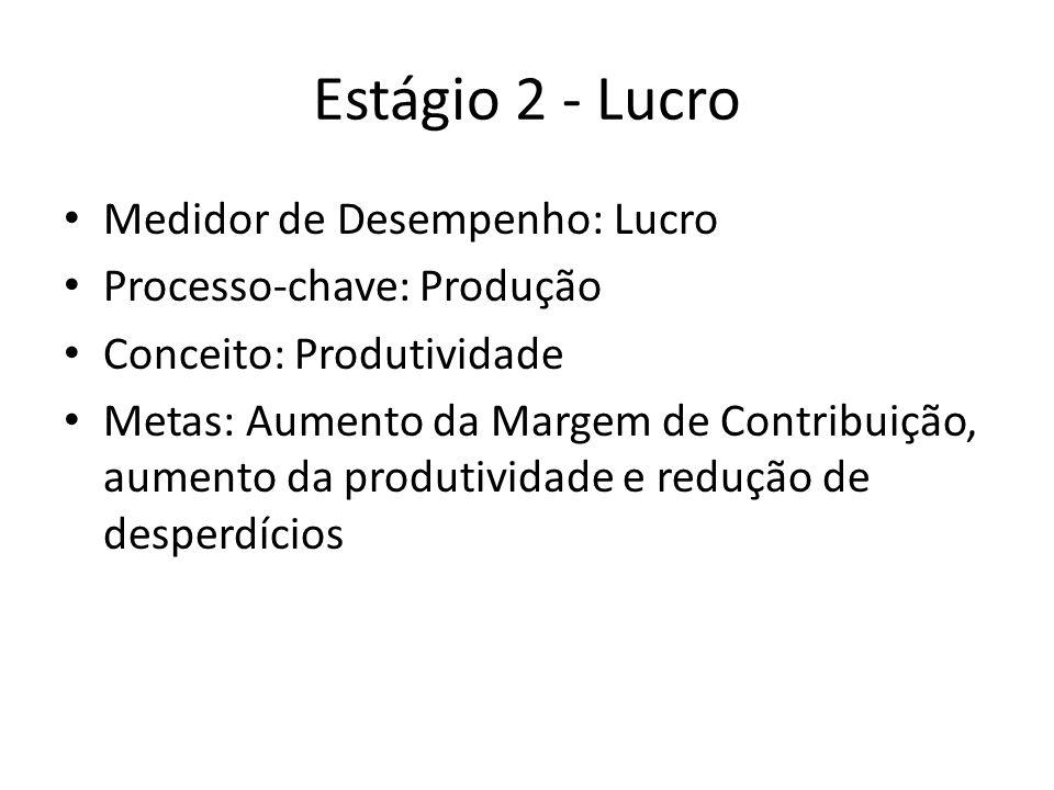 Estágio 2 - Lucro Medidor de Desempenho: Lucro Processo-chave: Produção Conceito: Produtividade Metas: Aumento da Margem de Contribuição, aumento da produtividade e redução de desperdícios