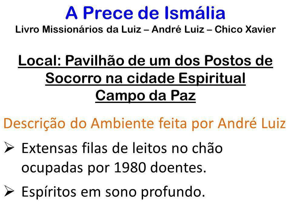 Local: Pavilhão de um dos Postos de Socorro na cidade Espiritual Campo da Paz Descrição do Ambiente feita por André Luiz  Extensas filas de leitos no