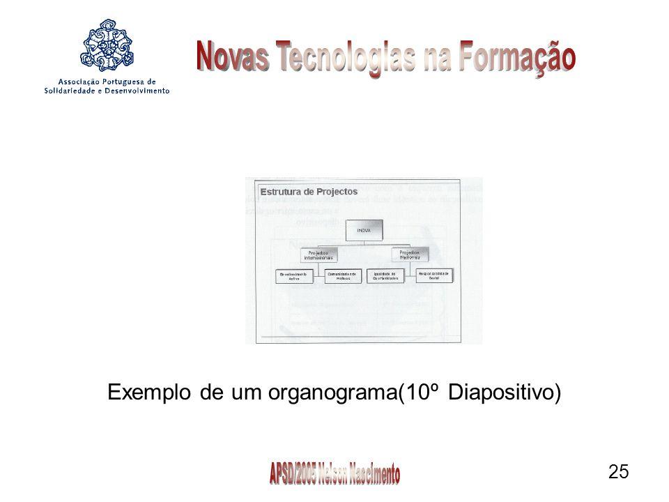 25 Exemplo de um organograma(10º Diapositivo)