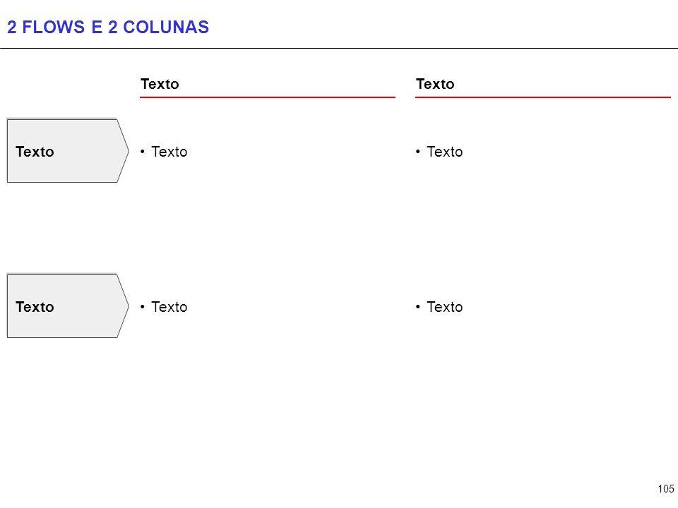 105 2 FLOWS E 2 COLUNAS Texto